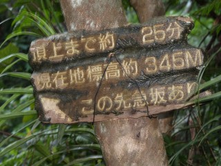 20070731blog17