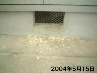 20100304blog1