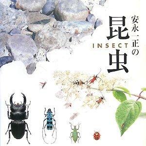 Yasunaga_konchu