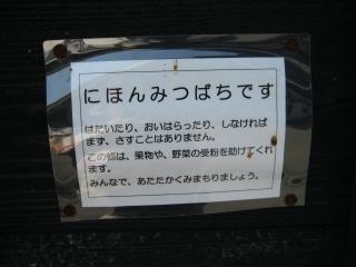 20111009blog10