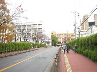 20111203blog1