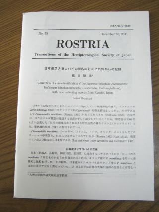 20120203blog1
