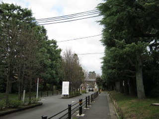 20120310blog10